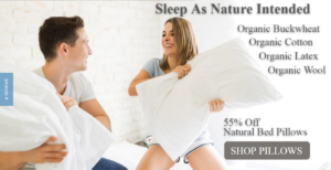 Natudal Bed Pillows