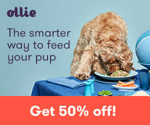 Ollie Dog Foods Offers